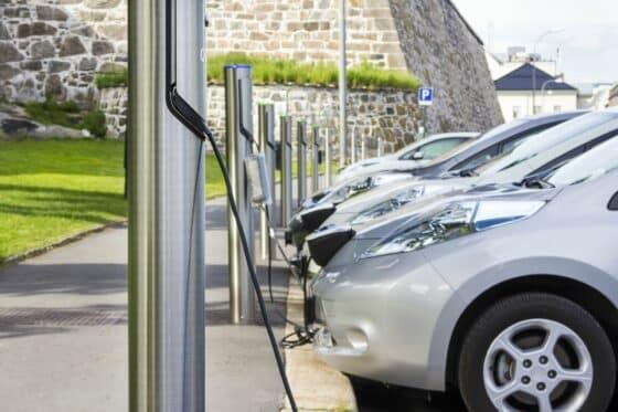 Mehrere Elektroautos stehen aufgereiht vor Ladesäulen und werden aufgeladen
